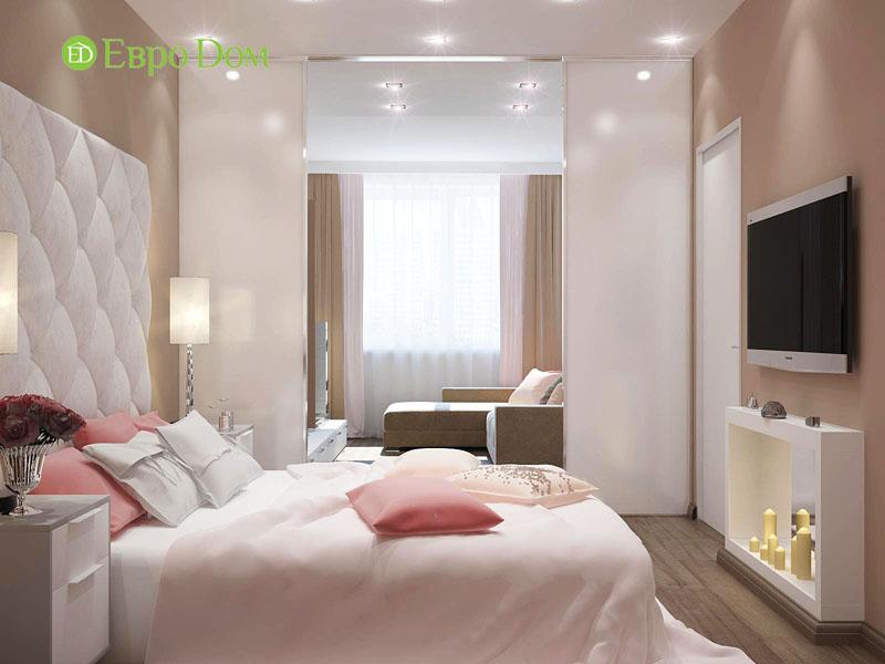 Гостиная со спальней за перегородкой